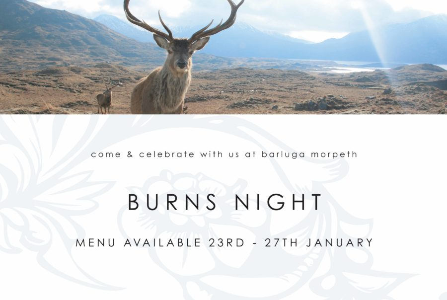 Burns Night @ Morpeth